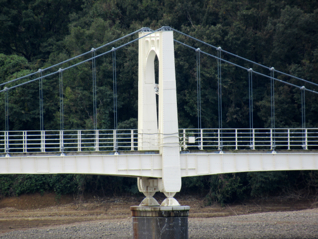 狭山湖の吊橋4