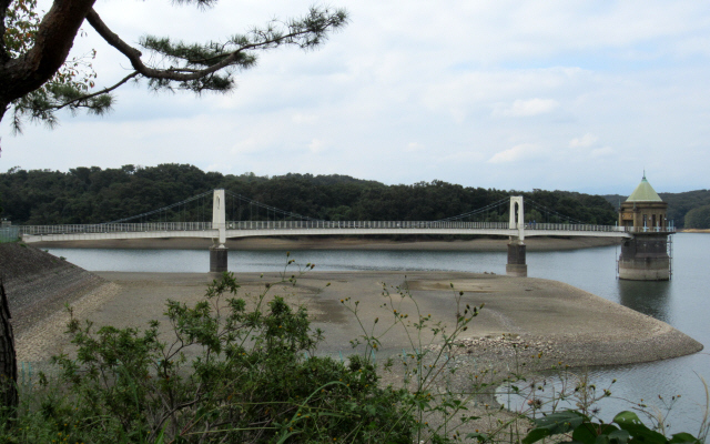 狭山湖の吊橋1