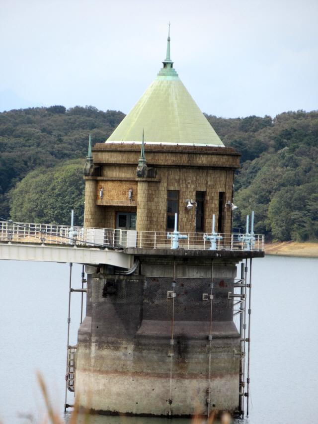 狭山湖の吊橋5