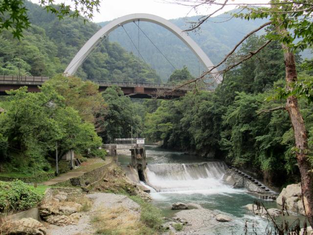 新天柄橋2