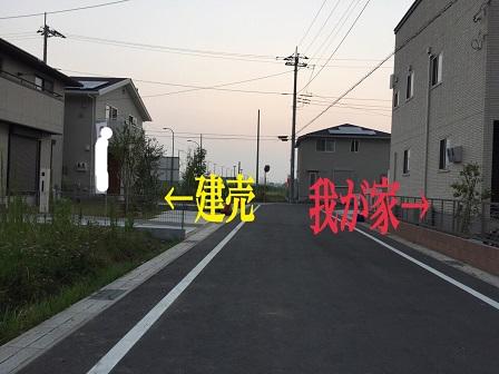 2015080207572717f.jpg
