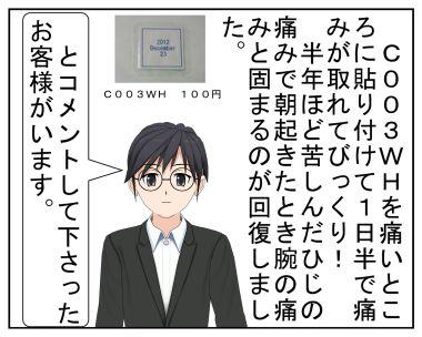 C003Wはホントは300円_001