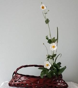 anemone18.jpg