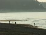 5.由比ヶ浜-16D 04