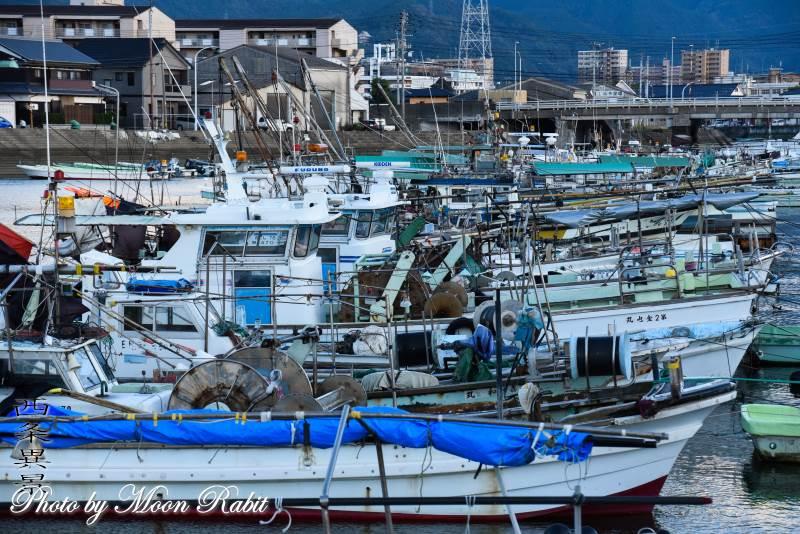 西条漁港の漁船