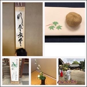 yuzuruha1810.jpg