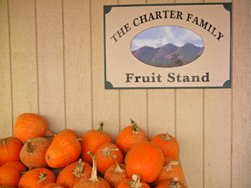 blog CP9 Williams, Farm Stand