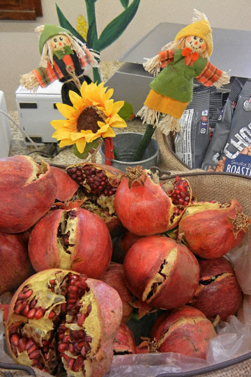 blog CP9 Williams, Farm Stand_DSCN0017-10.1.18.jpg